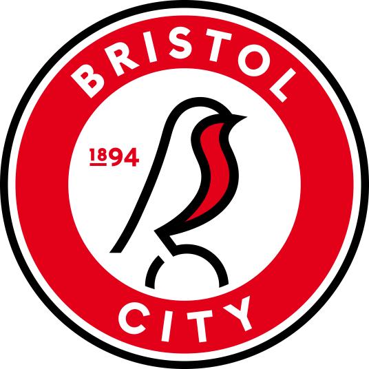 布里斯托尔城足球俱乐部