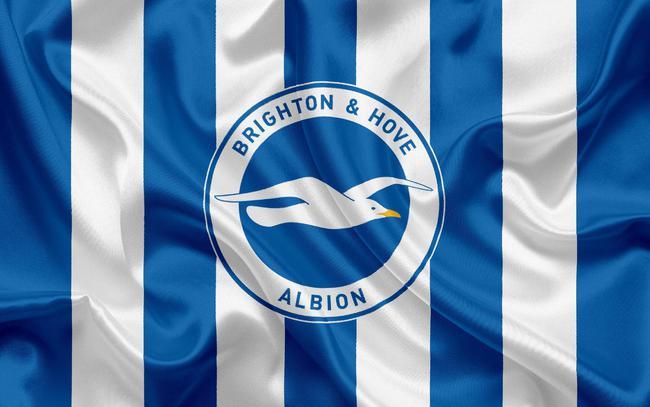 布莱顿队徽